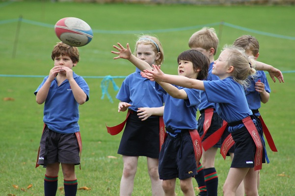 The rise of children's rugby